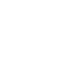 Gynecologic Services