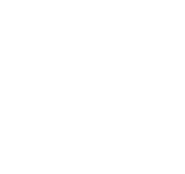 Travel Consultations and Education